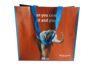 Beautiful RPET bag for South africa travel