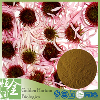 Chicoric Acid Echinacea Purpurea Extract