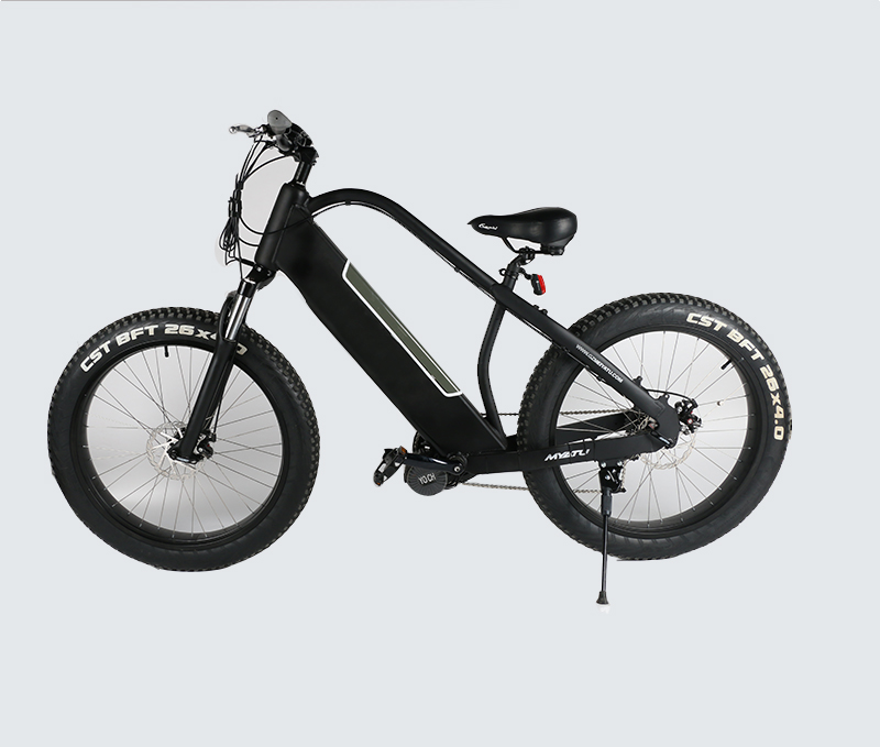26inch powerful voltage and motor electric fat bike