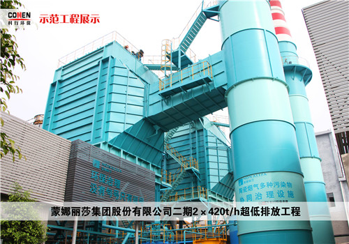 蒙娜丽莎集团股份有限公司二期2×420th超低排放工程.jpg