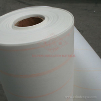 NMN Insulation Paper &Polyester Film