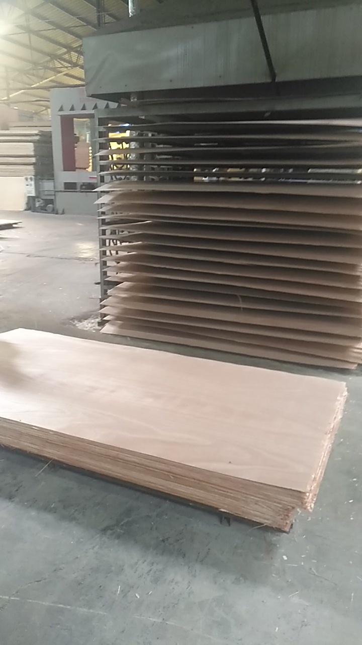 Plywood hot press