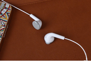 in- Ear Headsets with Microphone Earphone for Samsung S6