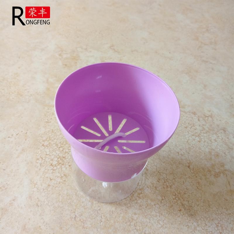 紫色花盆侧面