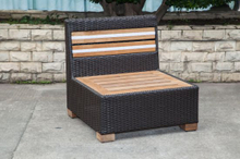Teak Wicker/Rattan Sofa for Outdoor Furniture (LN-3001-1)