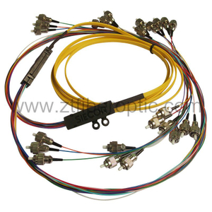 Singlemode 24fibers Optical Fiber Pigtail
