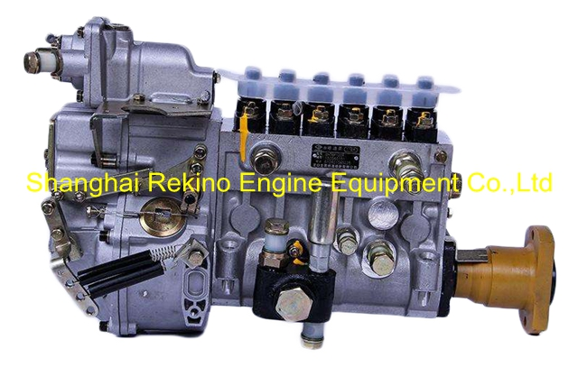 BP2226 612601080338 LONGBENG fuel injection pump for Weichai WP12D
