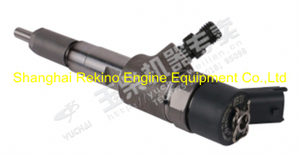 F9R00-1112100-A38 Yuchai common rail fuel injector