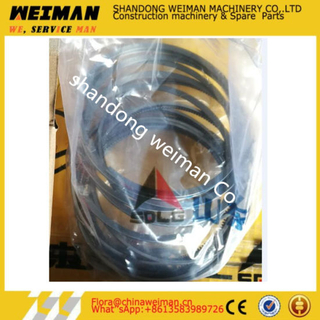 Piston Ring Set 4110000841003 for Wheel Loader From Sdlg