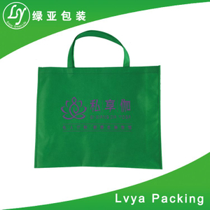 Professional Good Quality Eco-Friendly Alibaba China Custom Non Woven Bag