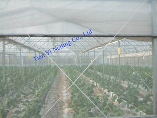 Agriculture Net 045
