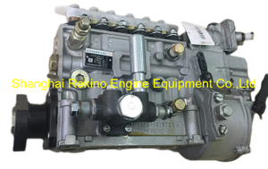 BP22G6Z 612630030261Z LONGBENG fuel injection pump for Weichai WP12