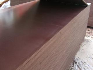 Eucalyptus Waterproof Film Faced Plywood (12mm/15mm/18mm/21mm)