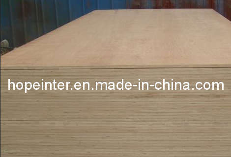 Birch Plywood/Plywood (HL010)