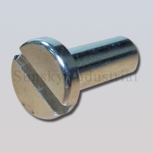 Cnc lathe machining cnc machining stainless steel pin (AL13144)