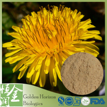 Natural Taraxacum Officinale Dandelion Root Extract Powder 10:1 20:1 Flavones 5%-30%