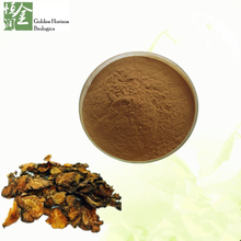 Ligusticum Extract Chuanxiong Extract Chinese Herb Ligusticum Wallichii Ligusticum Chuanxiong Extract