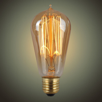 Brass Base Material and 25W-60W Power Vintage Bulb
