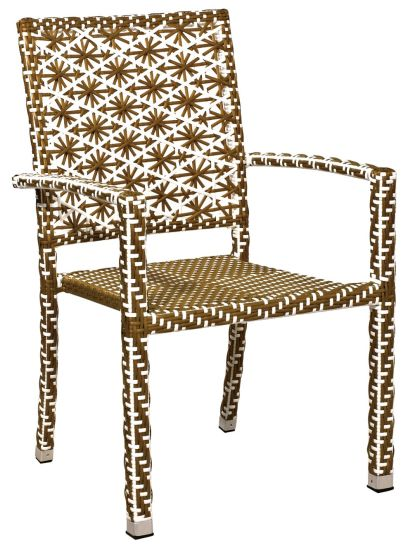 Garden Set (chair and table) --Ln-1037
