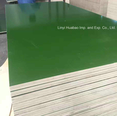 PVC Green Film Faced Plywood for Shuttering