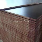 18mm Brown Film Faced Plywood for Construction Plywood (ZBP009)