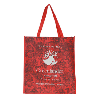Customized non woven promo bag