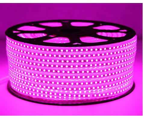 JY-LED 12V/24V Strip