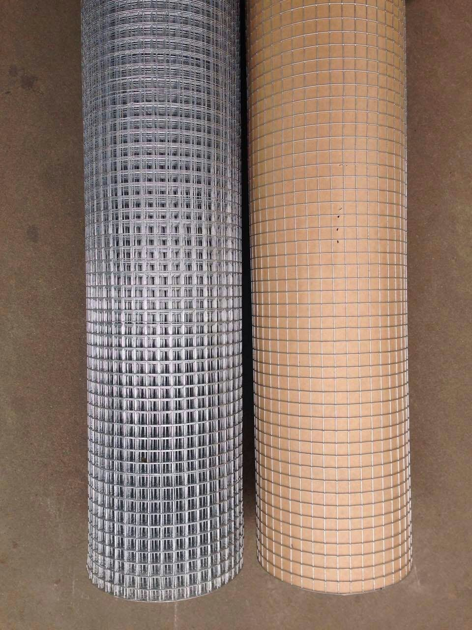 China manufacture hot dipped galvanized welded wire mesh from China ...