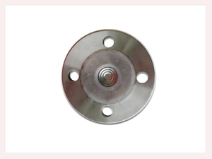 PG-030 Flange with with PTFE coat
