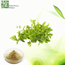 Factory Supply Thymol /Thyme Extract / Thymus Vulgaris Extract Powder / Thymus Vulgaris P.E.