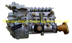 BP22L6 612601080781 Longbeng fuel injection pump for Weichai WD618