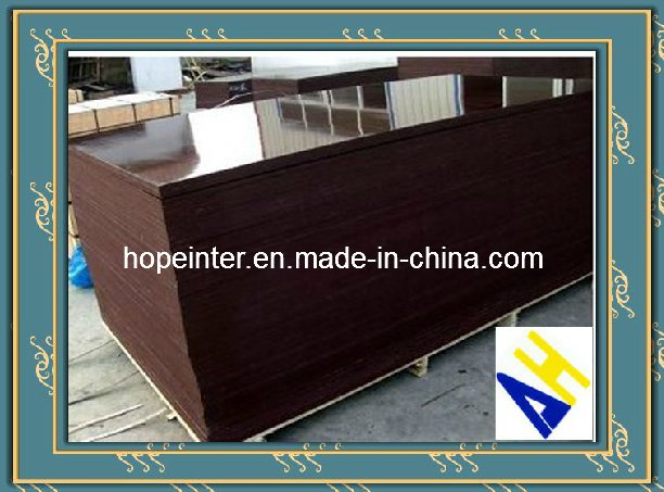 Brown /Black Film Faced Plywood for Construction12mm/18mm/20mm/21mm