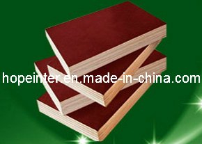 Sell Shuttering Film Faced Plywood/Marine Plywood with Logo