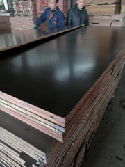 18mm Film Faced Plywood Hardwood Core to Dubai