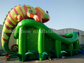 Popular Commercial Inflatable Chameleon Theme Dry Slide for Children