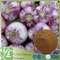 Natural Antibiotic Allicin Garlic Extract
