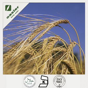 Barley beta-glucan can significantly help to reduce waist and visceral fat
