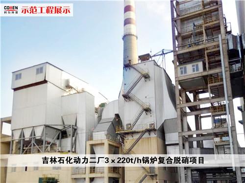 吉林石化动力二厂3X220th锅炉复合脱硝项目_副本.jpg