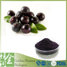 Factory Price Natural Brazil Acai Berry Extract Powder