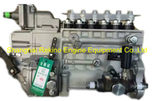 BP2084 612601080384 Longbeng fuel injection pump for Weichai WP10.300NE31