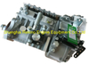 BP11B4 612601080225 Longbeng fuel injection pump for Weichai WD615.67 XCMG ZL50 wheel loader