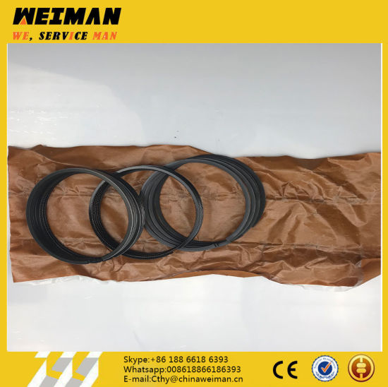 Weichai Engine Spare Parts 4110000556066 Piston Ring for Wheel Loader