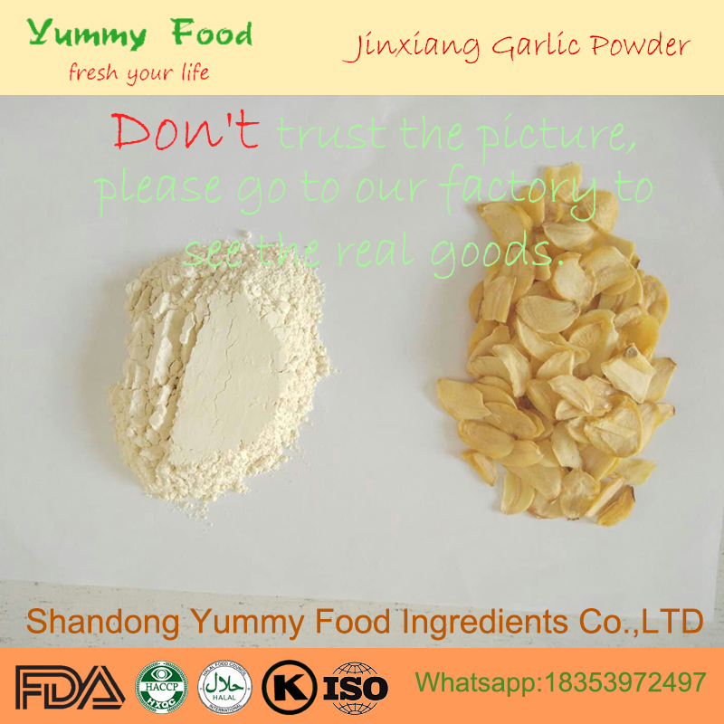 2018 Class A+ Cangshan Dehydrated Garlic Powder