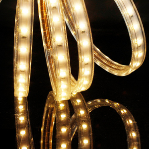 High Voltage SMD5630 60led/m LED Strip Light