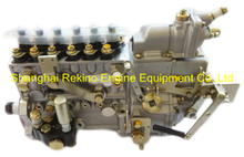 BP5138 612600081159 LONGBENG fuel injection pump for Weichai WD618
