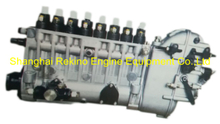BP6901 817023170001 Longbeng fuel injection pump for Weichai 8170ZC600-1
