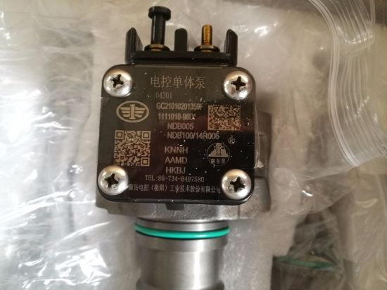 Fuel Injection Pump (unit pump) 4110001009024 Shandong Lingong