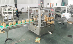 carton packing machine for bag in box 拷贝