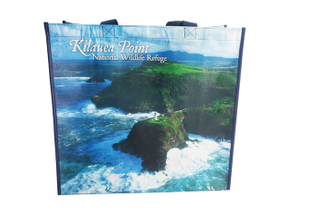 Full color print RPET shopping bag