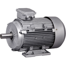 IEC -general purpose - Electric Motors -Three-Phase - Aluminium Frame